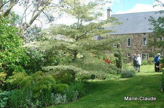 A la découverte d'un petit jardin du Cotentin,