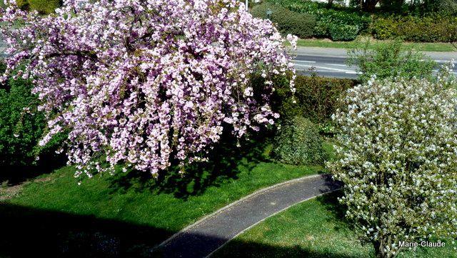 Le printemps nous envahit,