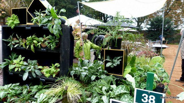 Chantilly, la fête des plantes !
