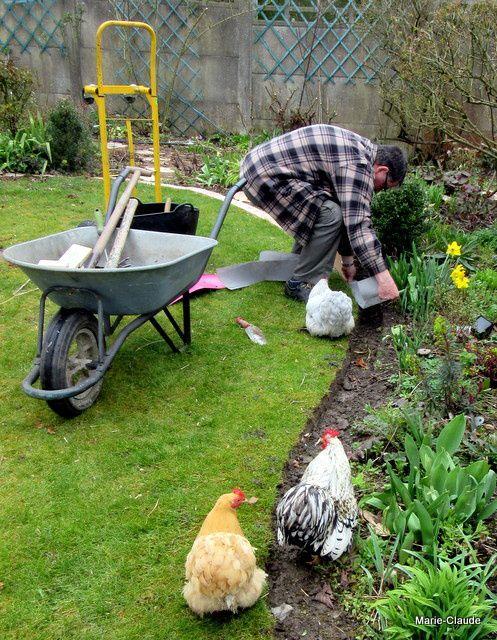 Les trois aides jardiniers sont en réalité des quémandeurs : Aglaé, la plus coquine, attend que son maître lui trouve un petit ver à grignoter...