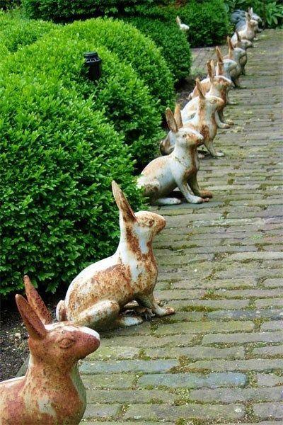 Comme ici , des lapins ( image empruntée sur le net )