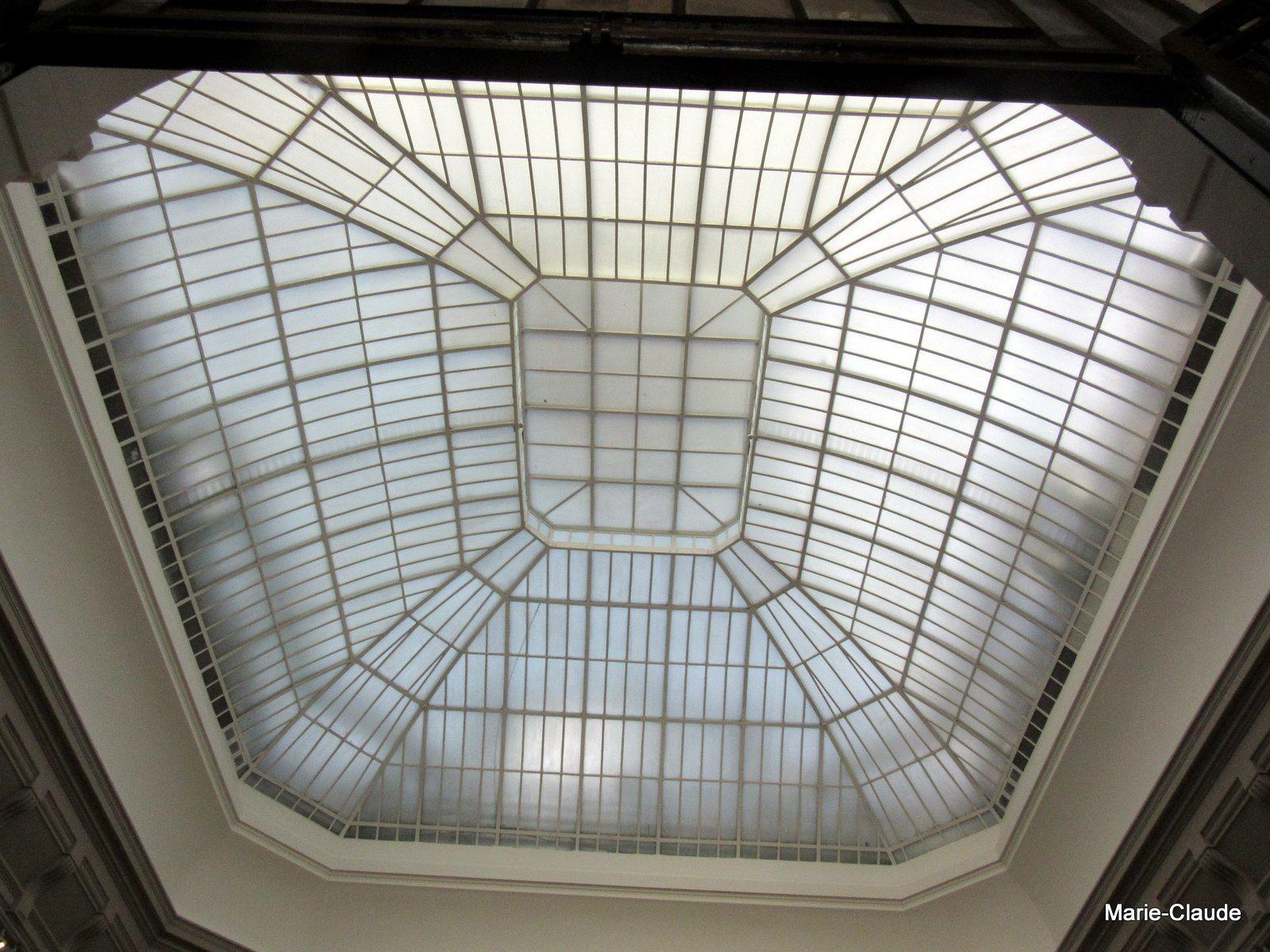 Les dômes de verre permettent une luminosité maximale