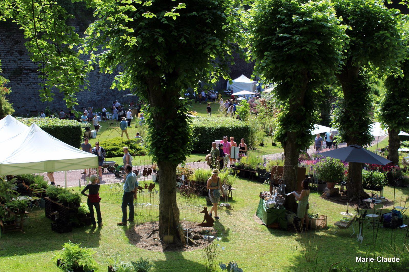 Doullens a fêté les 30 ans de sa fête des plantes,