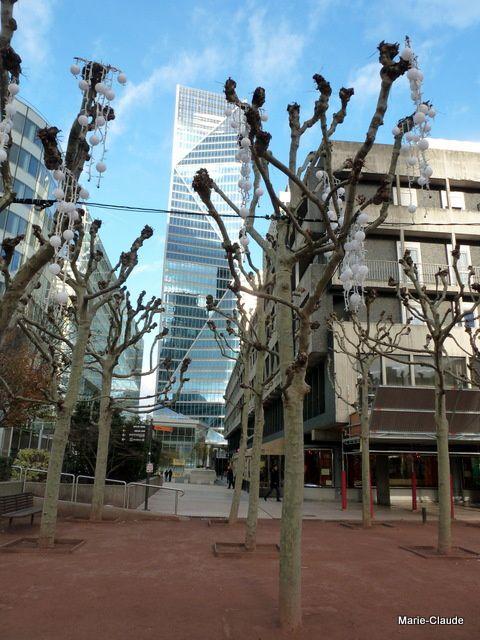 Les arbres sont taillés pour ne pas prendre trop d'espace, actuellement dépouillés de leur feuillage, ils sont vêtus des guirlandes de Noël