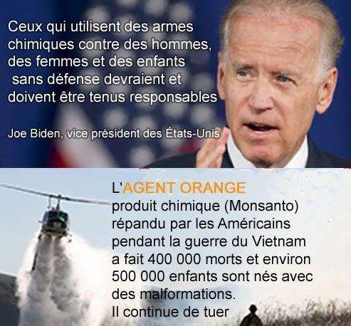 Les Etats-Unis et les armes chimique : une image mieux qu'un long message