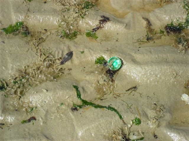 La mer n'est pas une poubelle !