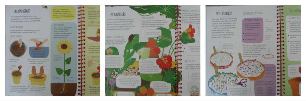 La Box Légumes Bio de CultiverSonJardin {#Test}{#Box}{#CultiverSonJardin}{#LegumesBio} {#Bio}{#Usborne}