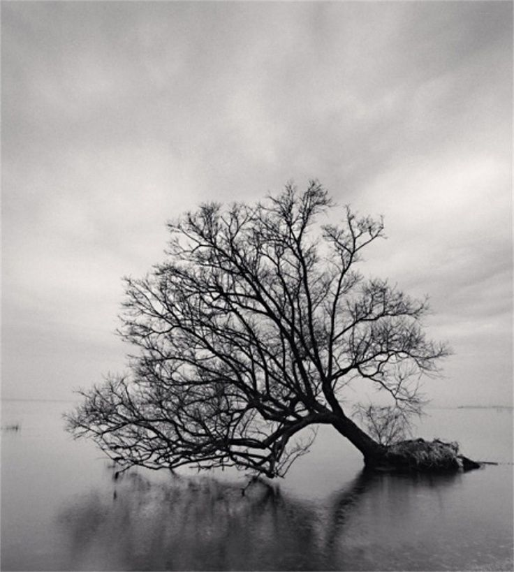 Photographie de Michael Kenna.