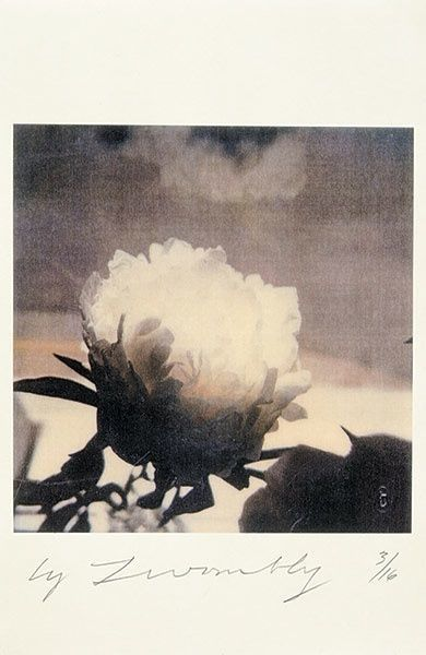 Photographie de Cy Twombly.