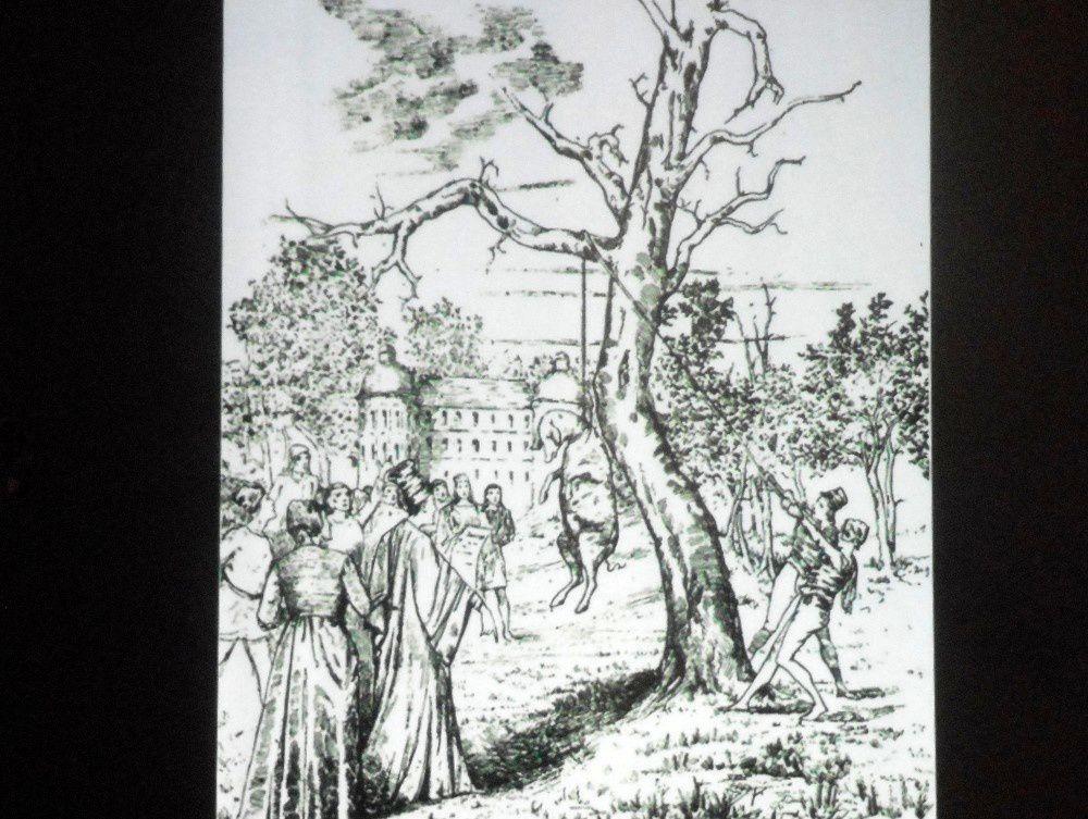 Le paysan et l'animal domestique : causerie au château du Plaix