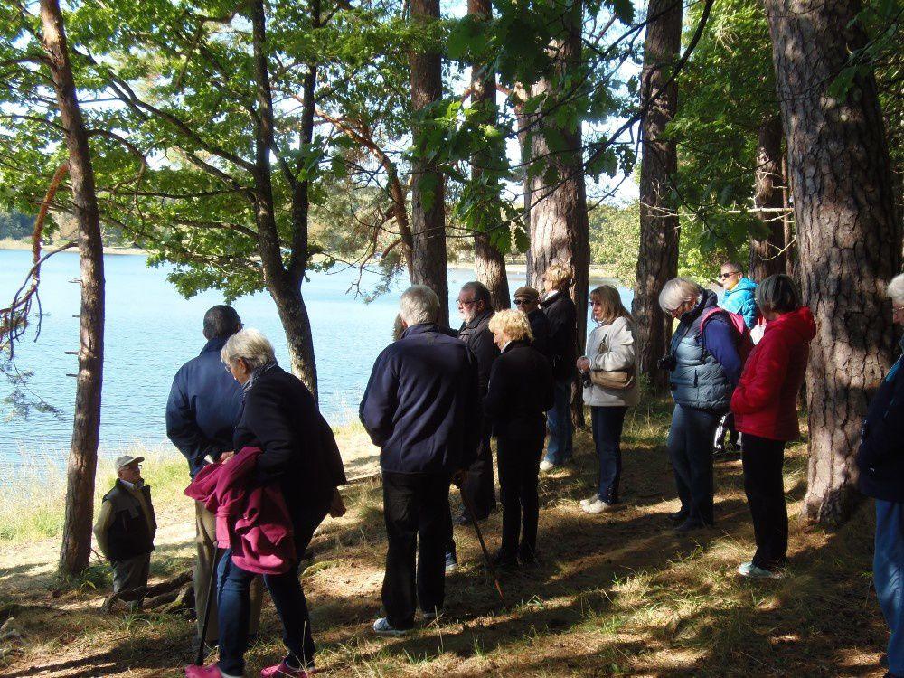 Tronçais : forêt, merrandier et brame avec Châteaumeillant Nature