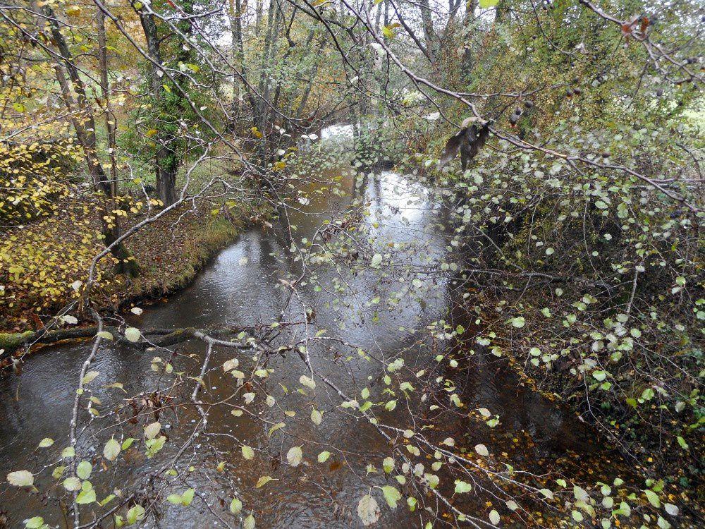 Un Culan d'automne pour la randonnée des châtaignes