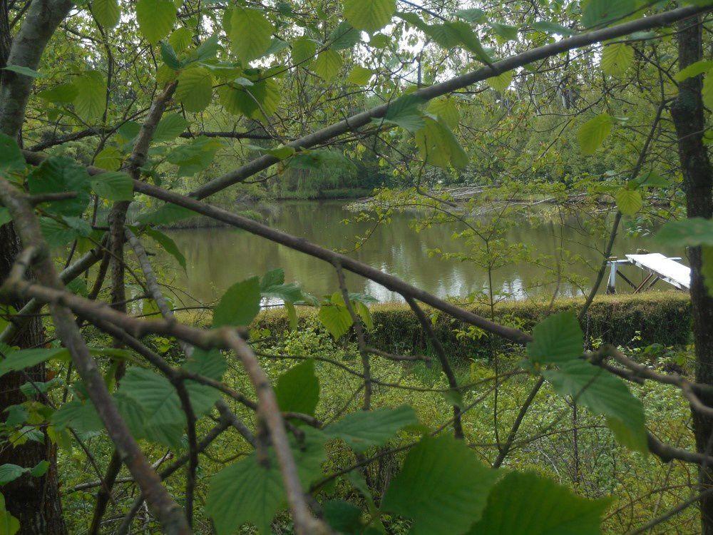 Balade de printemps à Châteaumeillant