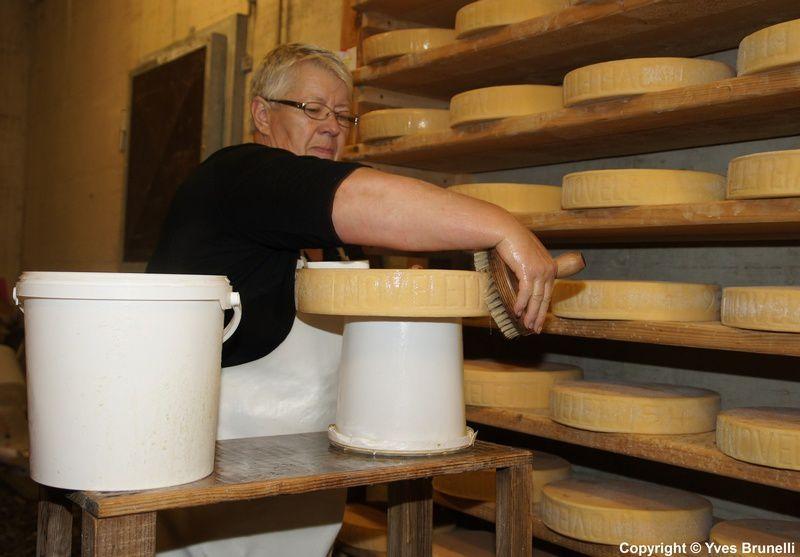 En mêm temps Cécile s'occupe des fromages plus vieux de la même manière mais moins souvent  2 a 3 fois par semaine