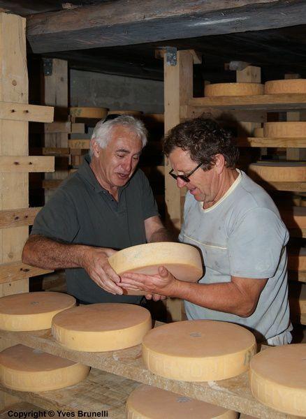 Et prêts à la vente pour les amateurs de  fromages d'alpages