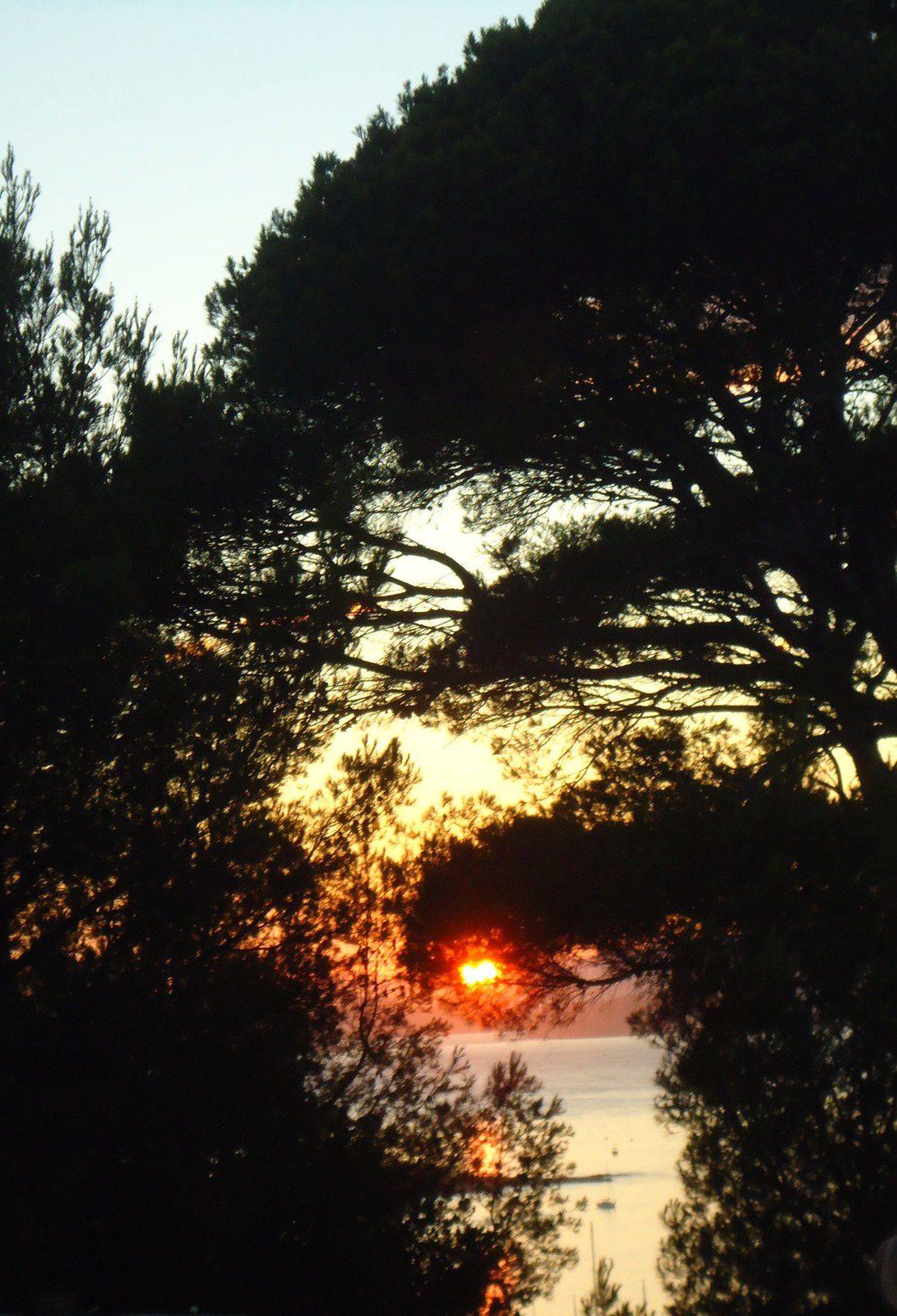 Sur l'Ile de Porquerolle