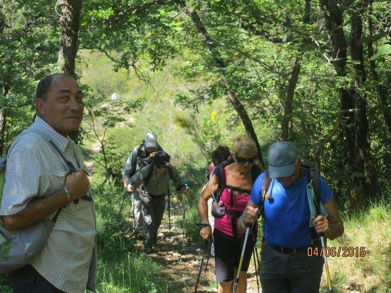 Circuit n°2 Montagne de Thiey - 4 juin 2015