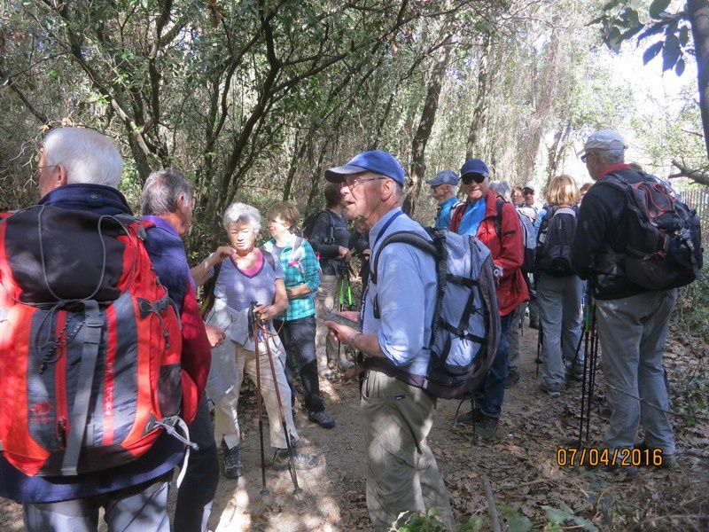 Sillans la Cascade - circuit 2 des petites jambes - 7 avril 2016