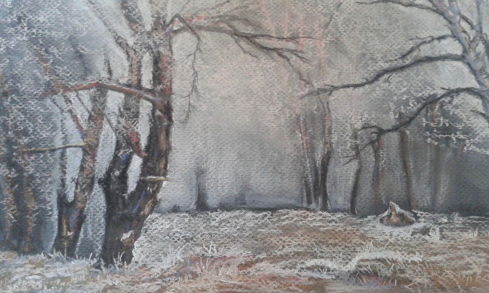 Cette fois-ci je suis décidée .. mon brouillard va devenir de la neige , un peu de brume dans la forêt ...