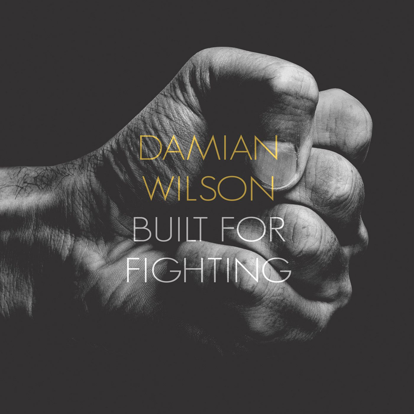 LP review DAMIAN WILSON &quot&#x3B;Built For Fighting&quot&#x3B;