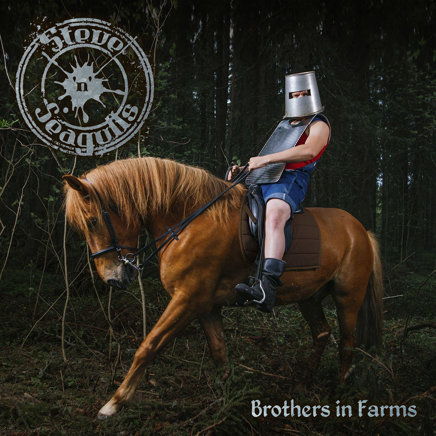 CD review STEVE'N'SEAGULLS &quot&#x3B;Brothers in Farms&quot&#x3B;