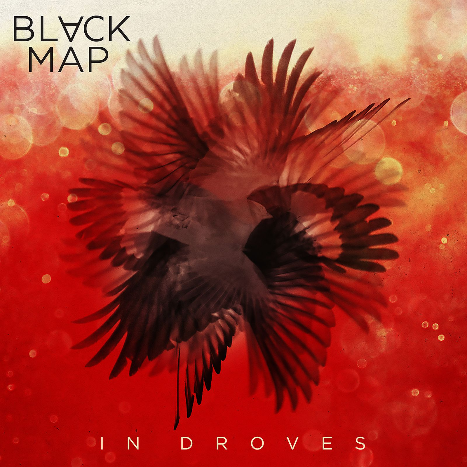 """CD review BLACK MAP """"In Droves"""""""
