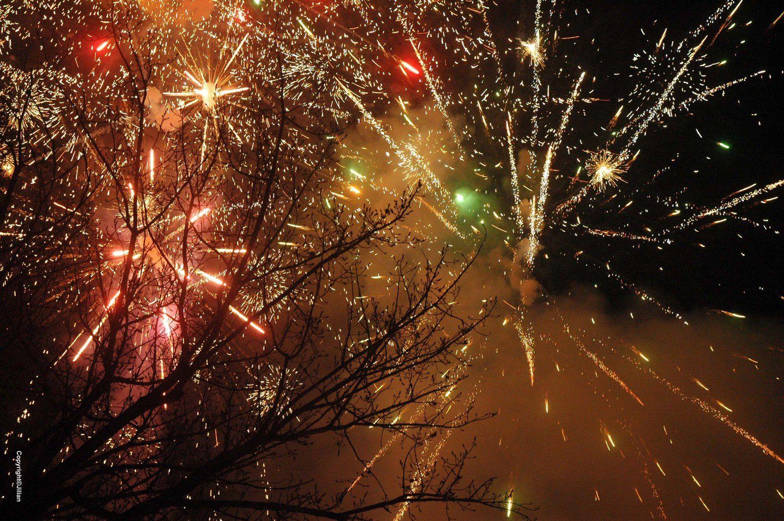 Fête du Printemps : bienvenue à l'année du Singe ! - 春节 :猴年大吉