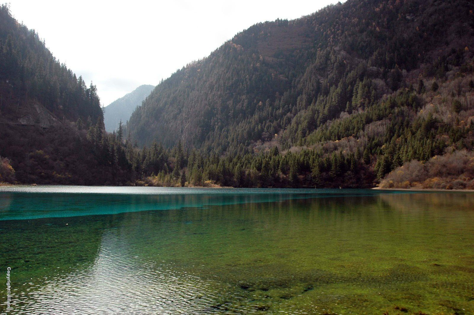 La vallée de Jiuzhaigou, Sichuan - 四川九寨沟