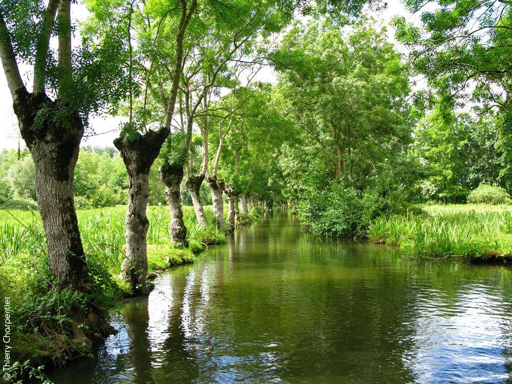 Les Marais Poitevins