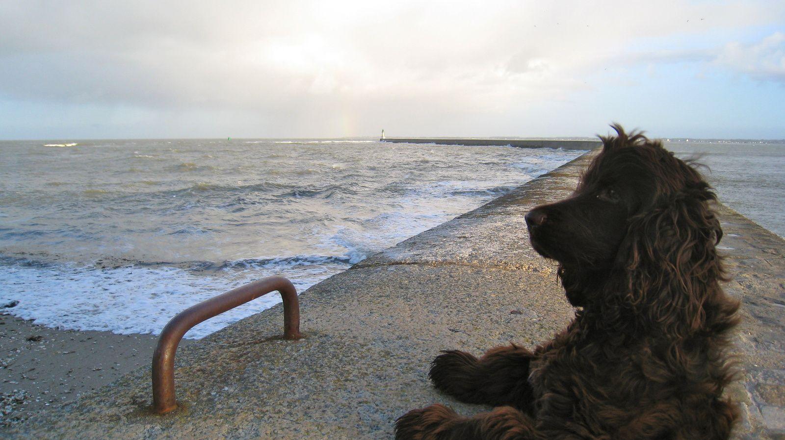 C'est très mouillé l'océan et plutôt glacial en février.