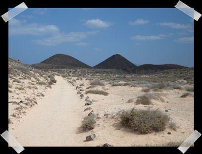 Les vacances de Tuvahou : Los Lobos