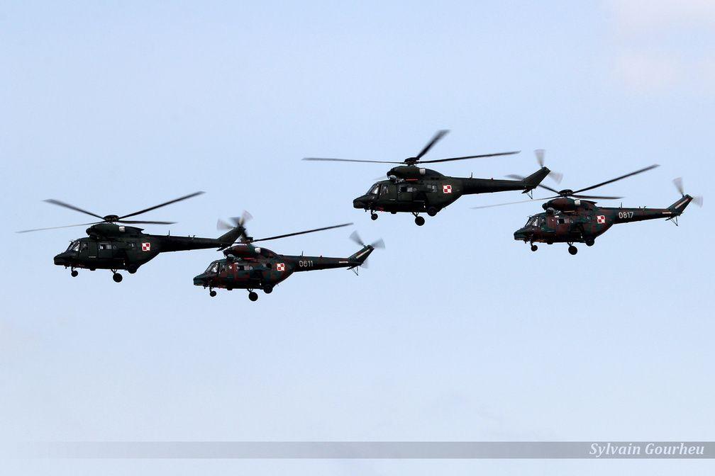 De conception polonaise, les W-3 Sokół sont des hélicoptères utilisés par les forces armées polonaises pour plusieurs types de mission.
