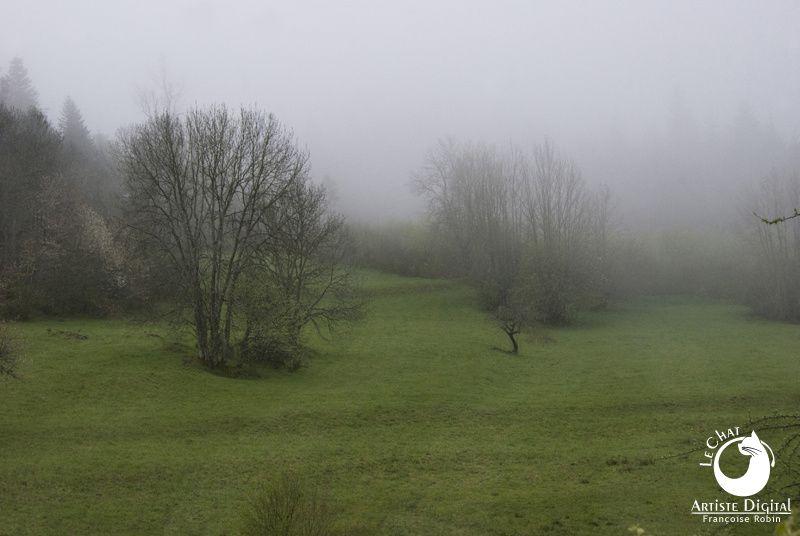 Auvergne et brouillard