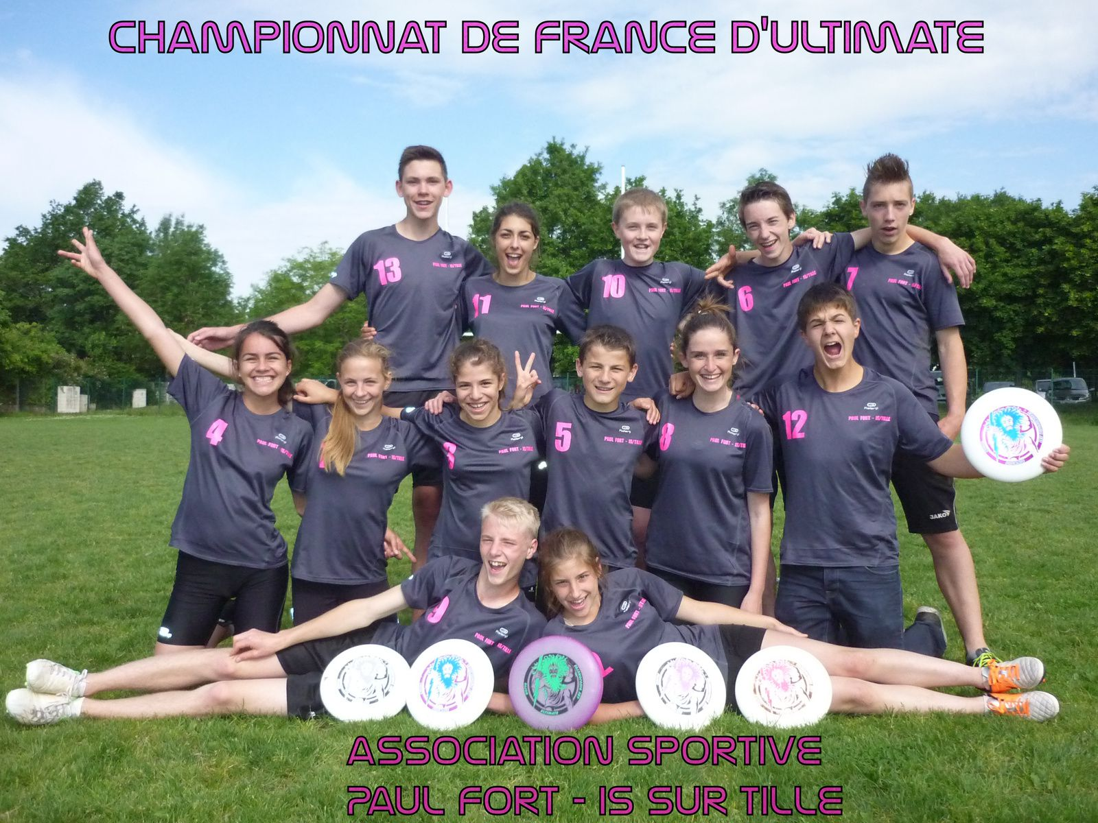 CHAMPIONNAT DE FRANCE D'ULTIMATE 2013/2014