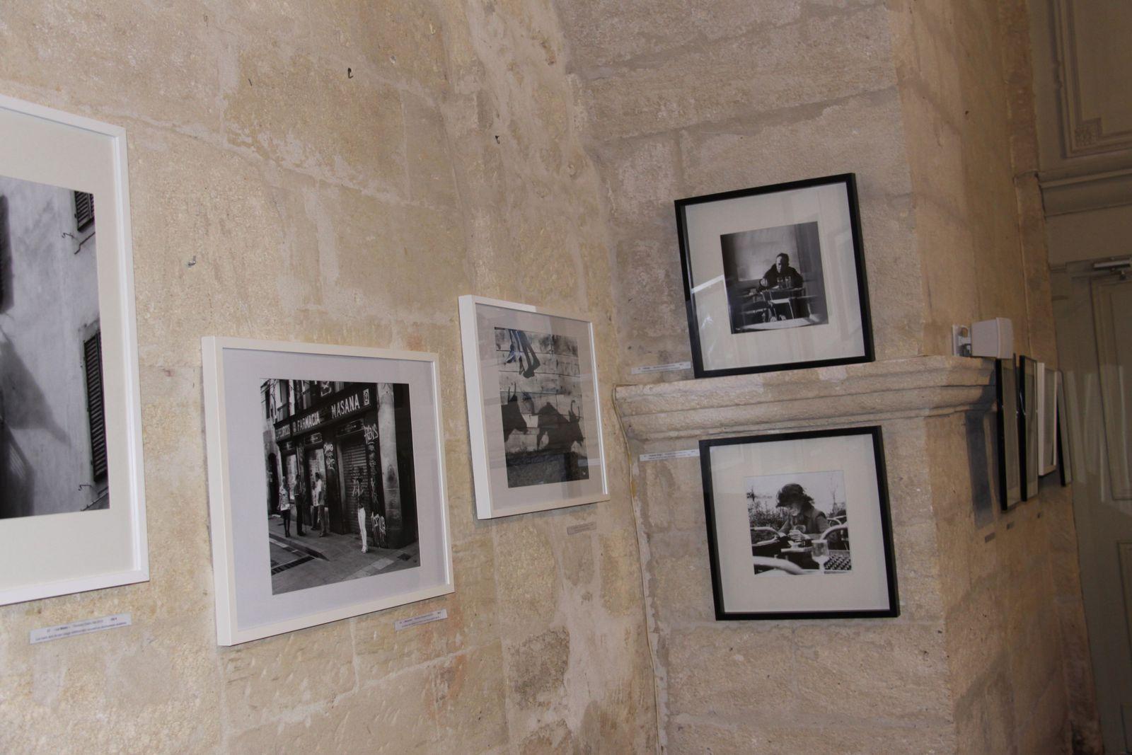 Les Dernières Manifestations et Expositions - Photos In Situ