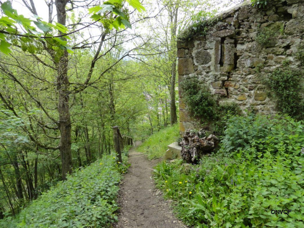 Chemin de ronde de Saint-Jean-Pied-de-Port ( Pyrénées-Atlantiques 64 ) AA