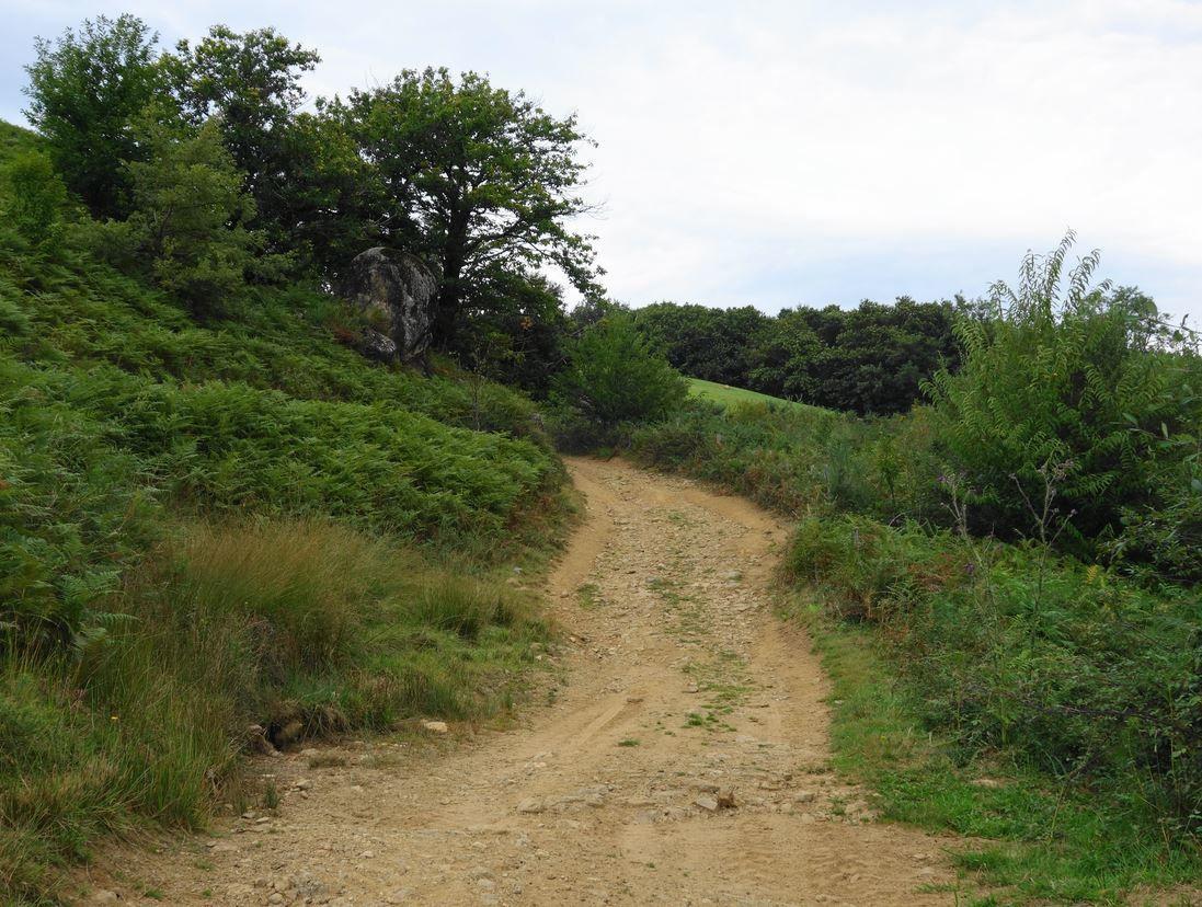 Le chemin sera moins pentu sur ce passage.