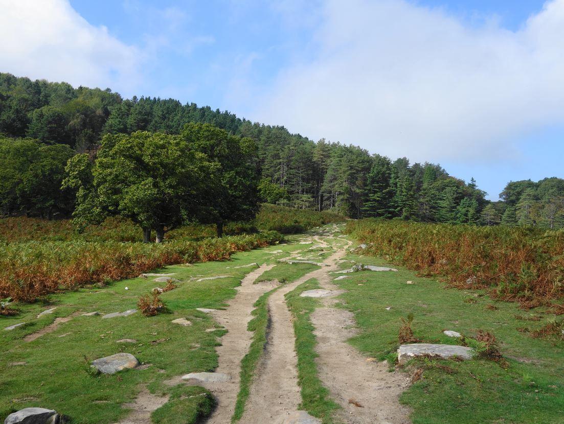 La Rhune depuis Sare ( Pyrénées-Atlantiques 64 ) AA Rando