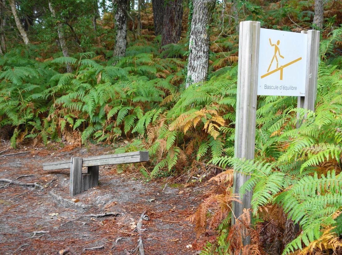 Pour les amateurs / amatrices un parcours de santé très complet a été créé à l'Ouest de l'étang de Moliets.