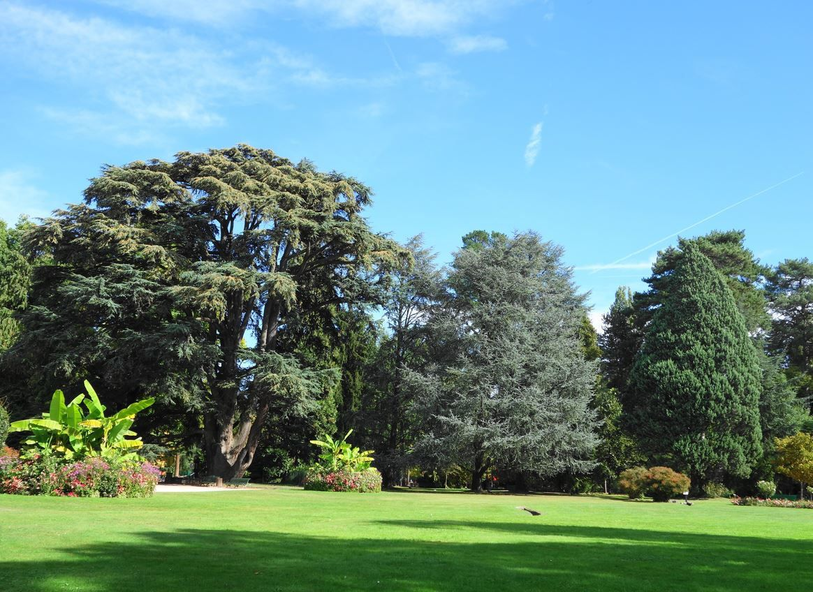 Jardin Massey, Tarbes ( Hautes-Pyrénées 65 ) AAA
