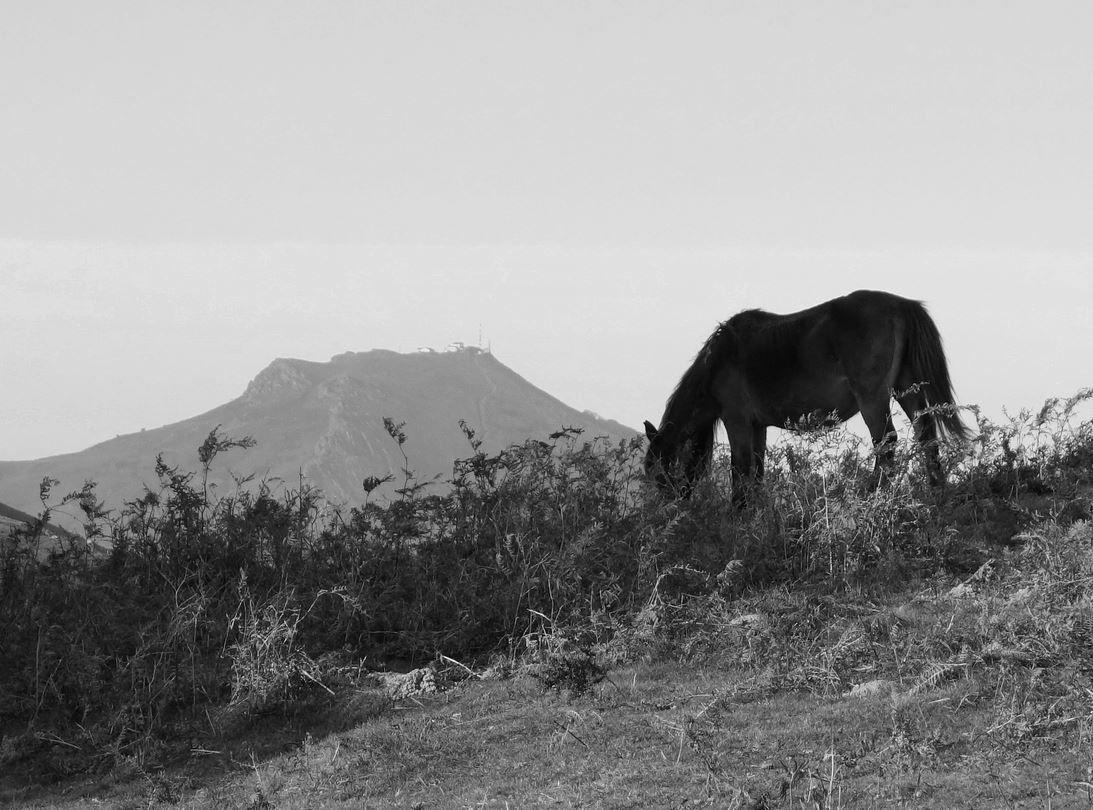 Au niveau de ce col vous aurez une belle vue sur la Rhune, et sa forme de chapeau au sommet plat ( 905 mètres de hauteur ).