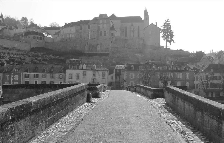Vieux Pont , Terrasson-Lavilledieu ( Dordogne 24 ) A