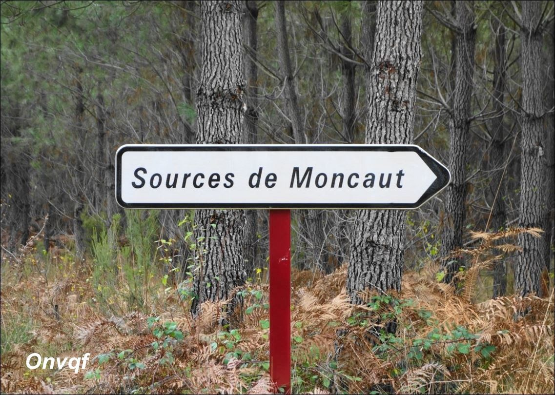 Sources de Moncaut, Losse AAAA