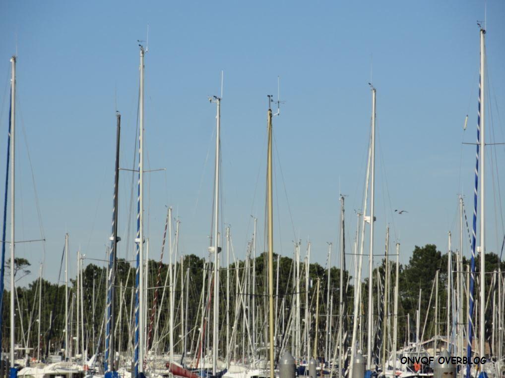 Port de Capbreton (Landes 40) A