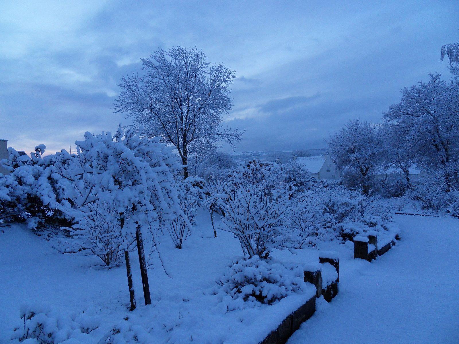 vers 8h30 mardi 3 février le jardin se retrouve recouvert d'un beau manteau blanc , 10 à 15cm sur le jardin ....