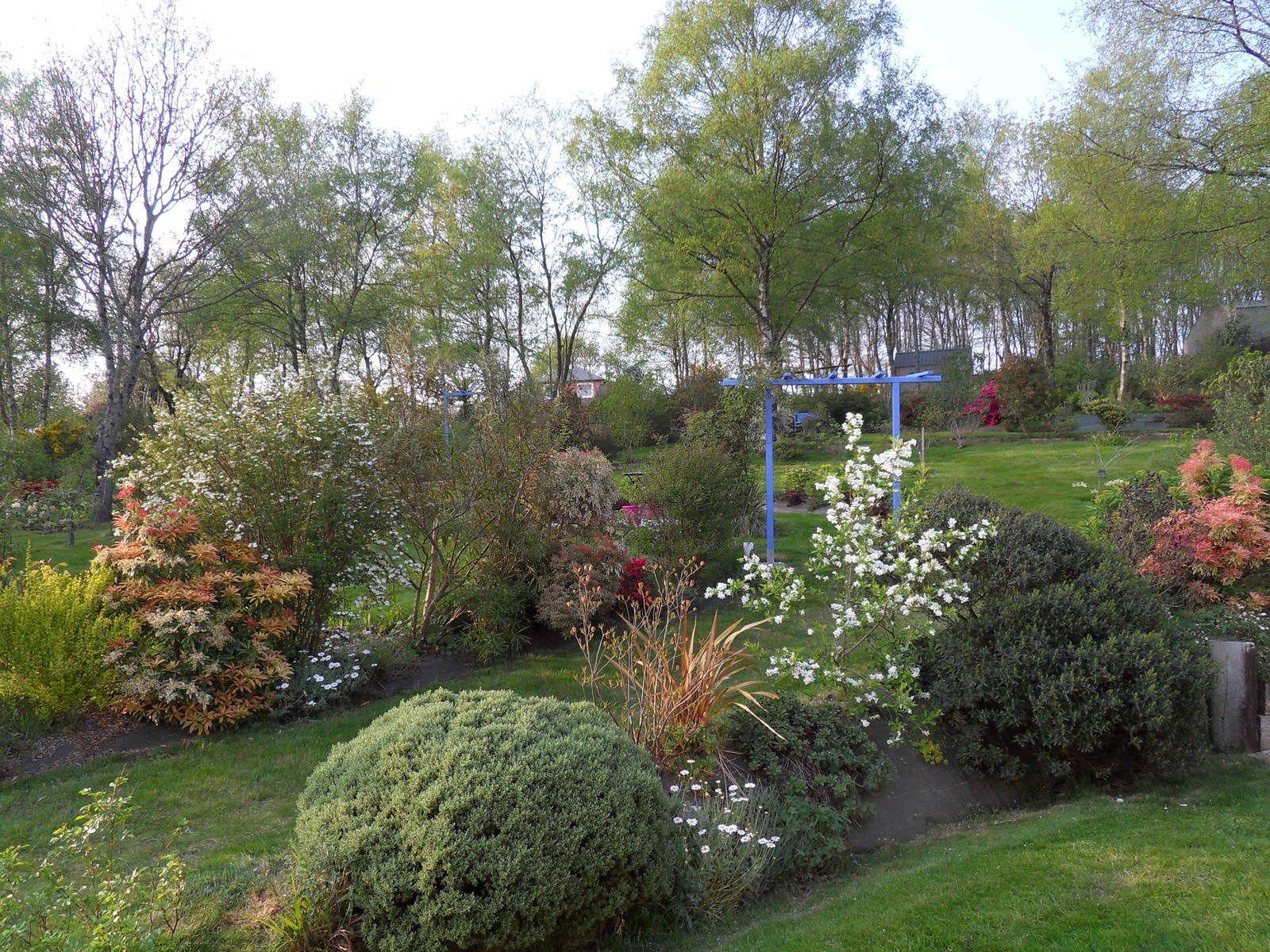 Floraisons du mois d'avril 2015