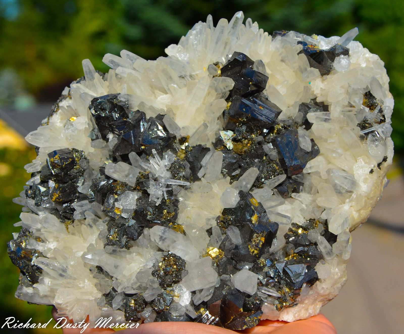 Sphalérite (Blend) et Pyrite sur Quartz gemme de Alimon Mine, Huaron District, Pérou
