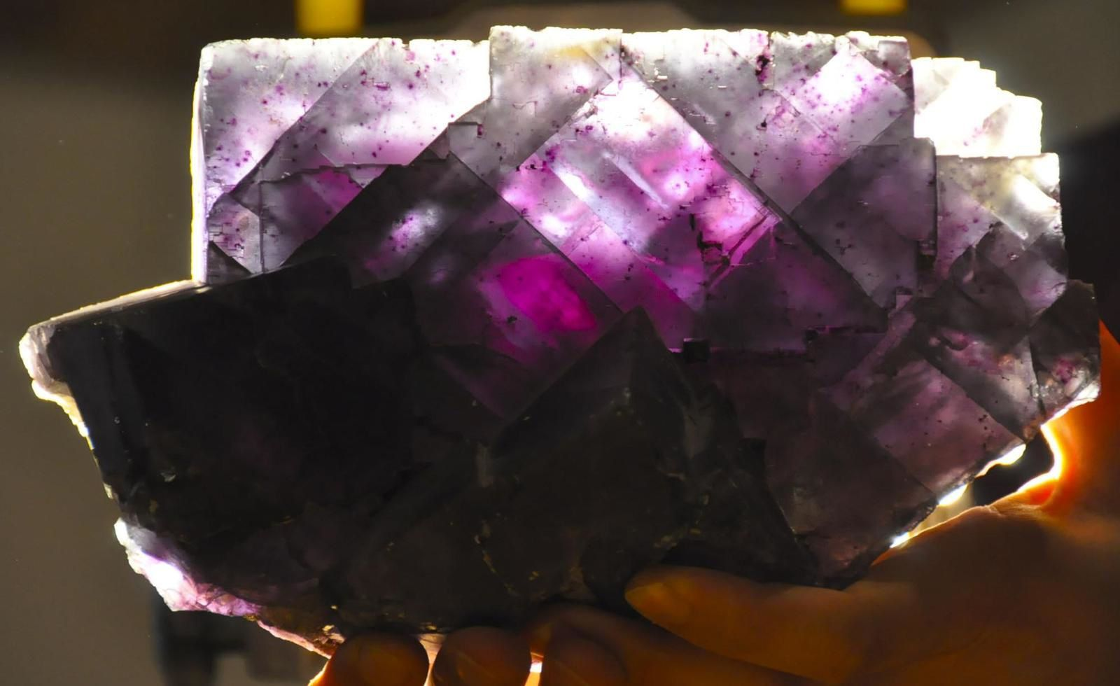 Fluorine violette XXL de Denton Mine, Cave-in-Rock, Hardin County, Illinois, USA