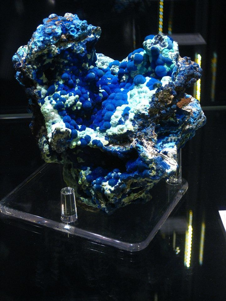 Azurite (photo de Philippe Prisent)
