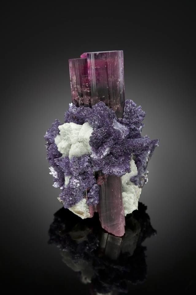 Tourmaline (Photo: Mark Mauthner)